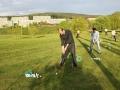 golfkurs-22